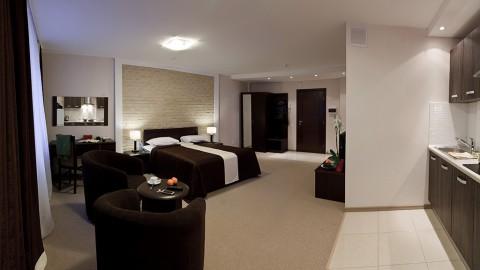 1-комнатный апартамент VIP с большой кроватью